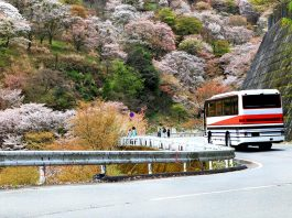 Travel by Bus in Japan