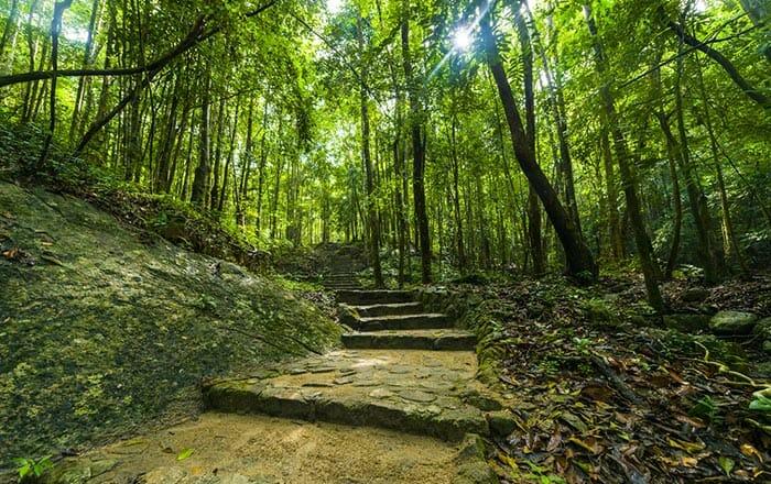 タオ島でのハイキング