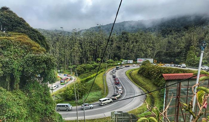 Способы добраться из Сингапура в Камерон Хайлендс